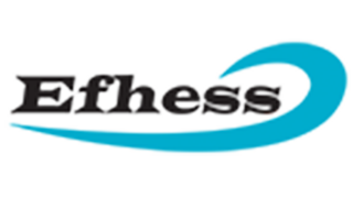 Cliente Efhess Comercial Ltda